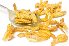 Small Fried fish Stock Photography