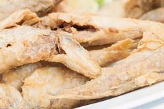 Small fried fish Stock Images