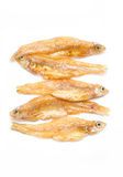 Small Fried Fish. Royalty Free Stock Images