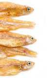 Small Fried Fish. Stock Photos