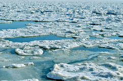 Small frozen sea ice in late autumn Royalty Free Stock Image