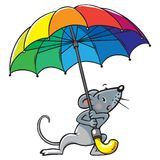 Small funny poor mouse with umbrella Stock Photos