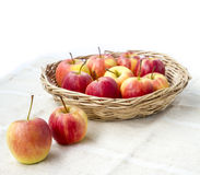 Small gala apple in basket on sack over white. Royalty Free Stock Photo