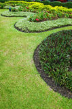 Small garden. Curve of grasses in green garden Royalty Free Stock Images