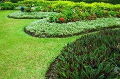 Small garden. Curve of grasses in green garden Stock Photo