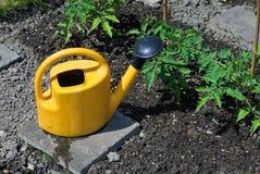 Small Garden Royalty Free Stock Image