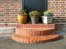 Small garden. Garden containers on a stair Royalty Free Stock Images