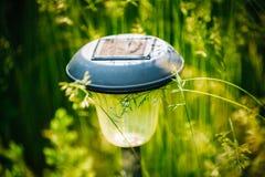 Small Garden Light, Lantern In Green Grass. Garden Design. Solar Royalty Free Stock Photo