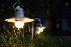Small Garden Light, Lanterns In grass Bed. Garden Design. Luminarias and Christmas lights decorate a garden at night.