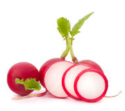 Small garden radish Stock Images