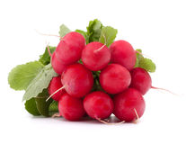 Small garden radish with leaves Stock Photos