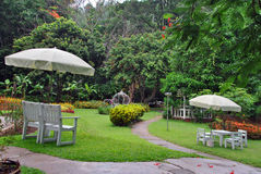Small garden in the resort. Garden in small resort in the jungle Royalty Free Stock Photos