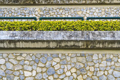 The small garden on the rock wall Stock Photography