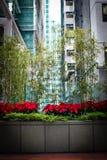 Small garden between skyscrapers in hong kong china Stock Photo