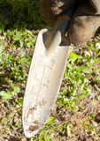 Small Garden Trowel. A gloved hand holding a small garden trowel Stock Images