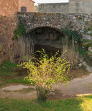 The small garden under the old bridge.  royalty free stock image