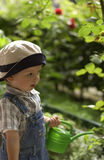 Small gardeners. Child helps in the garden watering flowers Stock Photo