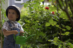 Small gardeners. Child helps in the garden watering flowers Royalty Free Stock Photo