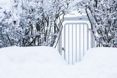 Small gate in hedgerow at winter Royalty Free Stock Photography