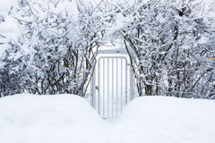 Small gate in hedgerow at winter Stock Images