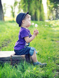 Small gentleman blowing the dandelions Stock Photos