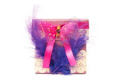 Small gift box with feathers and butterfly Royalty Free Stock Image