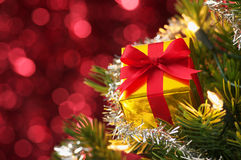 Small gift on Christmas tree.(horizontal) Royalty Free Stock Image