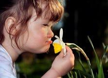 Small girl Royalty Free Stock Photos