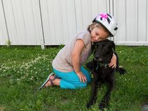 Small girl with bicycle helmet kneeling in grass holding black labrador. Tenderly Stock Photo