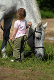 Small girl and big horse. Little girl make an attempt to establish communication with big grey horse. She offer hand and stroke it's neck stock image