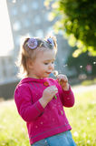 Small girl blowing on dandelion seeds Royalty Free Stock Photo