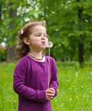 Small girl blowing to dandelion Stock Photo