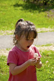 Small girl child blows a dandelion. Stock Photos