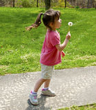 Small girl child blows a dandelion. Stock Photography