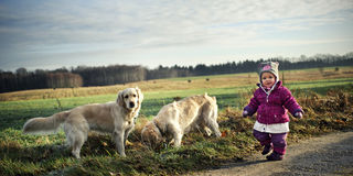 Small girl with dogs Royalty Free Stock Image