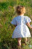 Small girl in the dress in the middle of the grass Stock Images