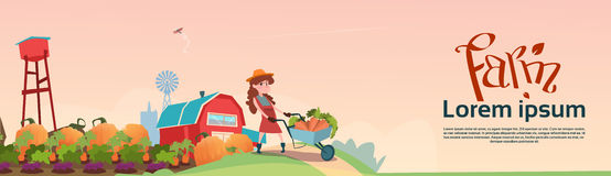 Small Girl Farmers Daughter Hold Trolley With Vegetables Harvest. Flat Vector Illustration vector illustration