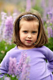 Small girl in a field of purple flowers. A little 4yr old girl child in a field of purple lupine flowers. Shallow depth of field Stock Image