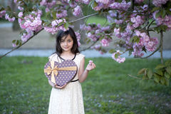 Small girl with gift box Royalty Free Stock Photo