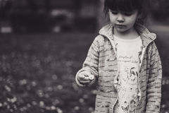 Small Girl Holding a Flower Stock Images