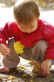 Small girl with leaf Stock Image