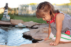 Small Girl Leaning Over Pond. Image of small girl leaning over and looking into a fish pond Stock Photography