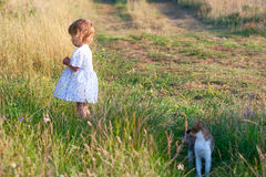 Small girl in the light dress and cat Stock Photography