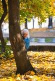 Small girl near autumn maple. Stock Photography