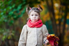 Small girl outdoor in the park. With yellow leaves Royalty Free Stock Images