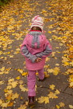 Small girl in pink walk on foot on autumnal park Stock Images