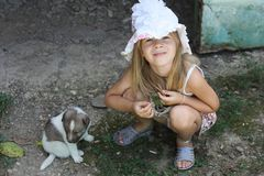 Small girl playing with puppy Stock Photos
