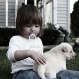 Small girl with puppy Royalty Free Stock Image