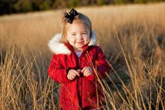 Small girl in red jacket in a field Royalty Free Stock Image