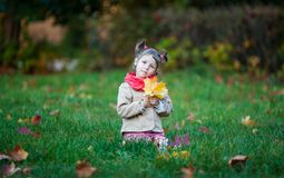 Small girl sitting on the grass in the park. Small girl outdoor in the park with yellow leaves Royalty Free Stock Photos